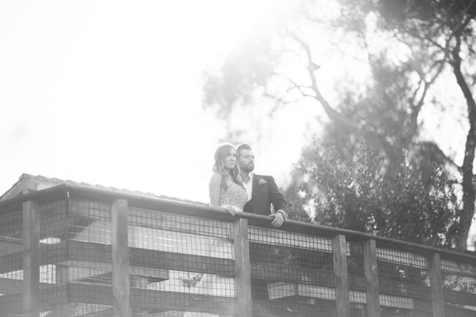 santa barabar zoo wedding and engagement pictures by nicole caldwell 41