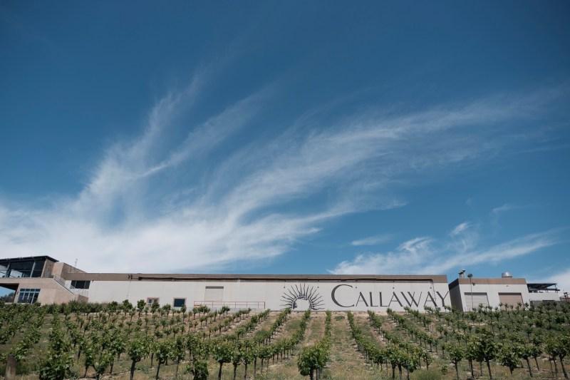 callaway winery weddings temecula wedding photographer nicole caldwell 01