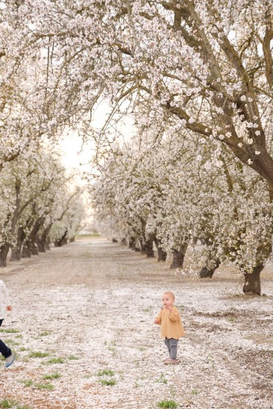 almond bloom family photographer nicole caldwell 14
