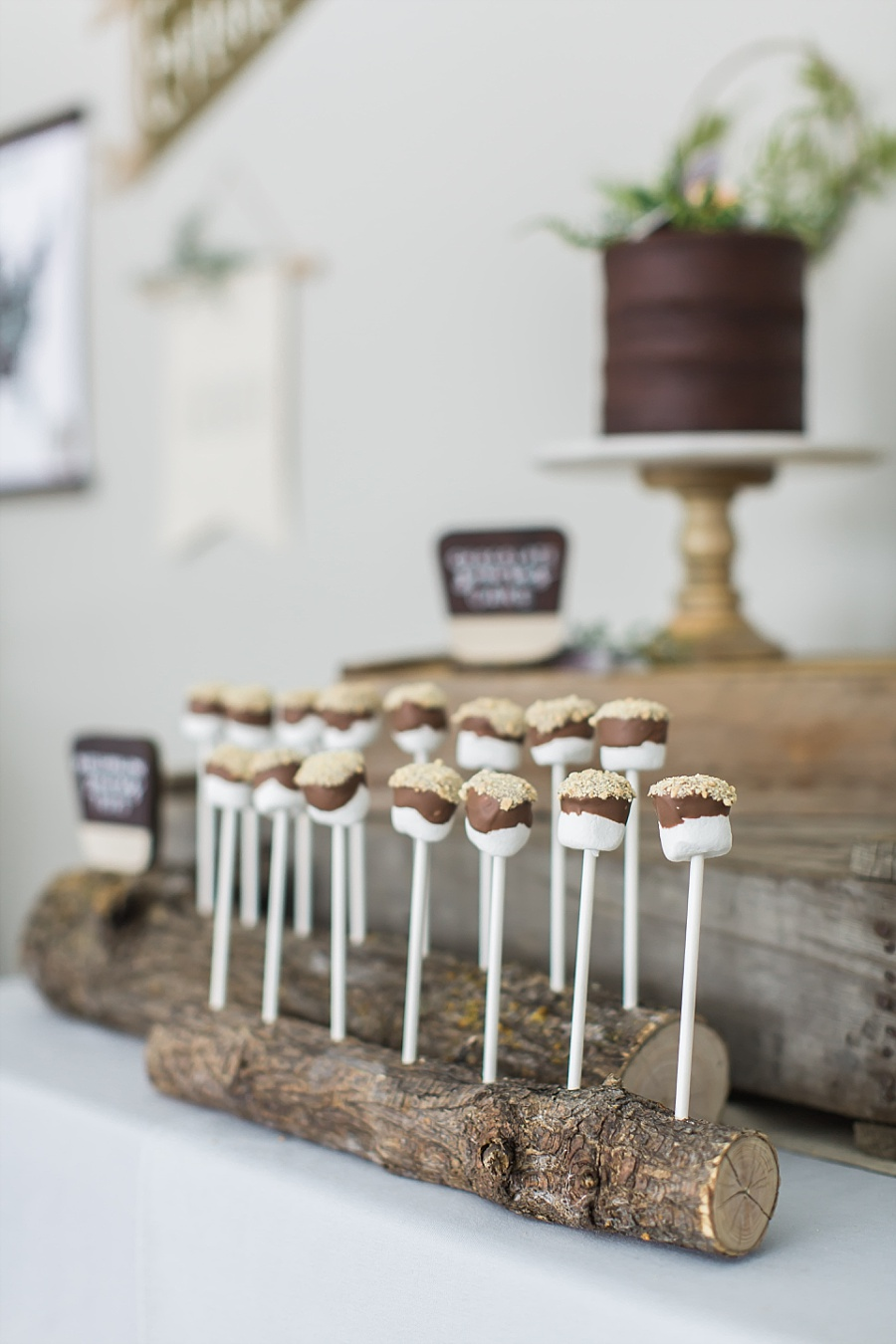 smores pops for national parks party