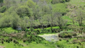 The holy spring feeds into a lake and a babbling brook below.