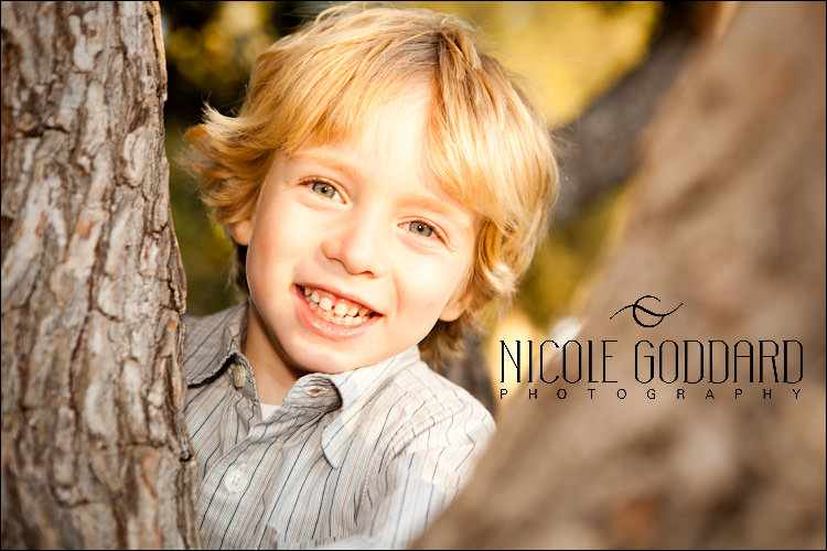 02_29_091115_NicoleGoddard_MG_8551_aiden_tree