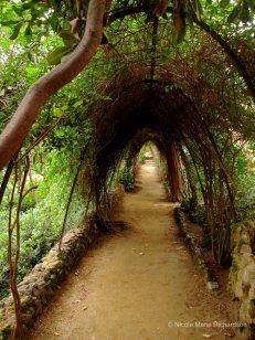 Park Güell path