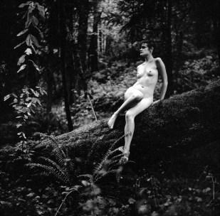 Forest Creature I, © Nicole Mark 2011