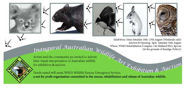 Nicole Phillips, designer, wildlife brochure featuring Australian wildlife