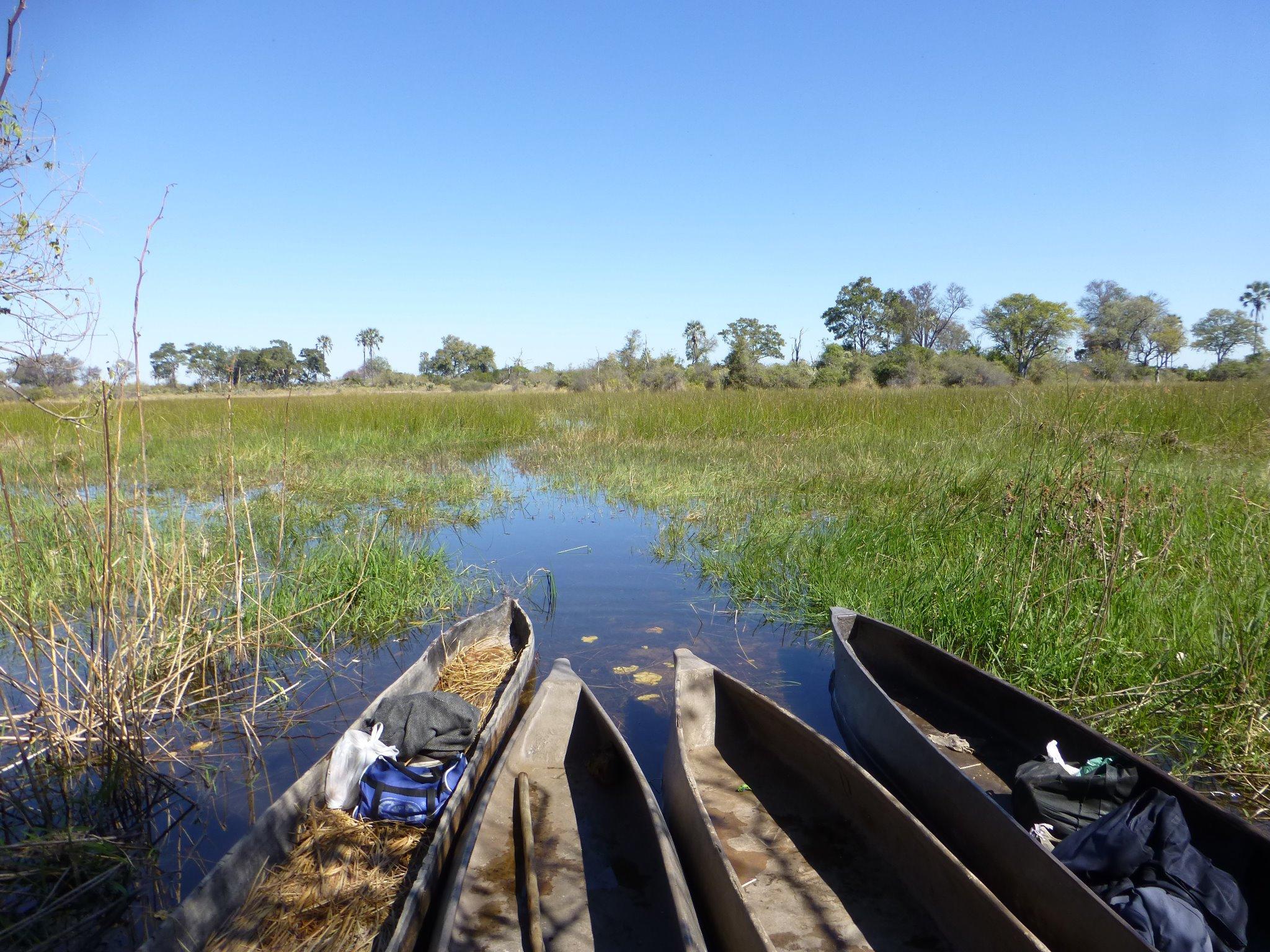 mokoros-okavango-delta-botswana