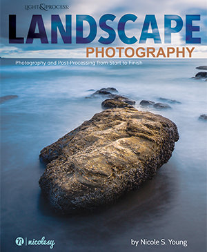 Light & Process: Landscape Photography