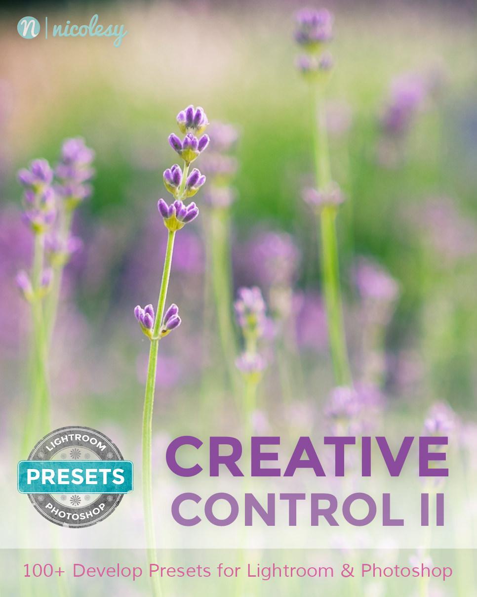 Creative Control II