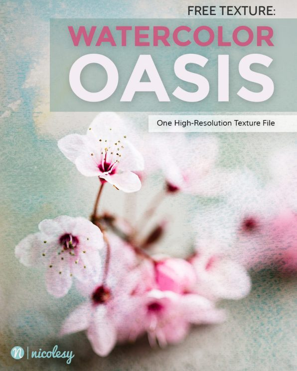 oasis-cover