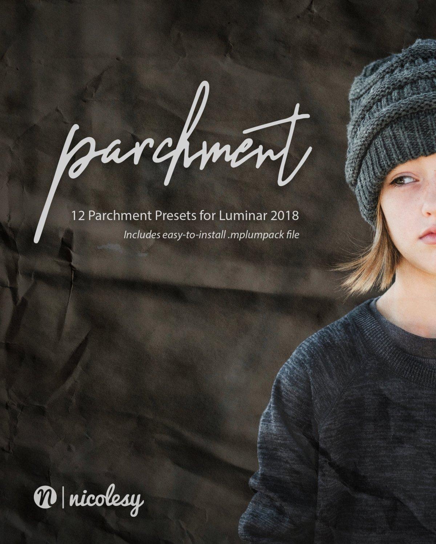 Nicolesy Parchment Presets for Skylum Luminar