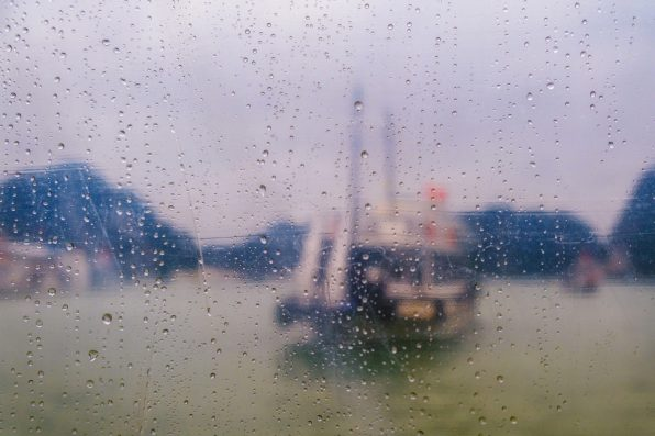 Photographing this with a wide aperture (f/3.2) allowed me to keep the raindrops in focus while blurring the background.