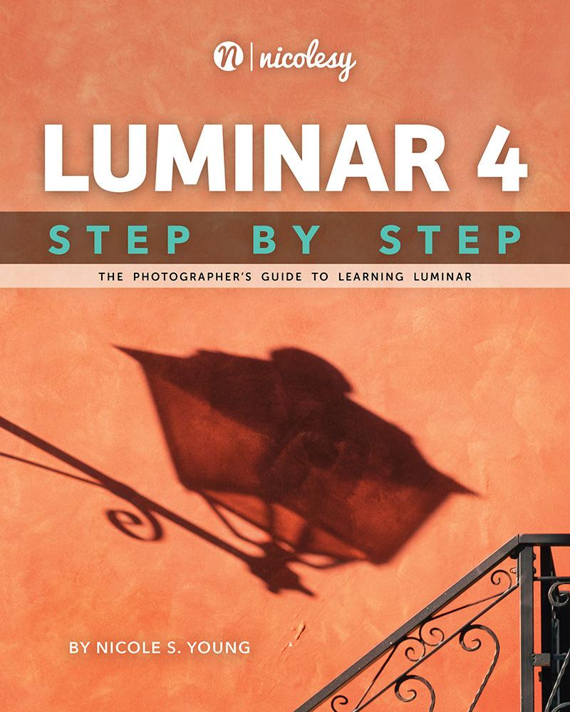 Luminar: Step by Step