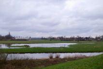 Pieterpad van Gennep naar Vierlingsbeek(14)