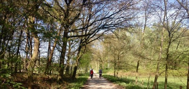 Pieterpad van Swolgen naar Venlo_13