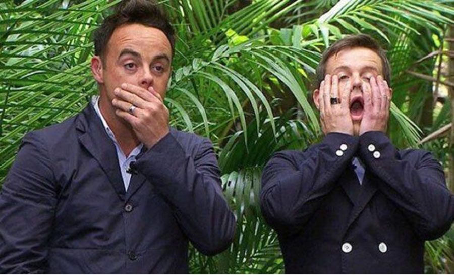 Fears For The I'm A Celebrity Came Mates As FERAL Dogs Run Around CampFears For The I'm A Celebrity Came Mates As FERAL Dogs Run Around Camp