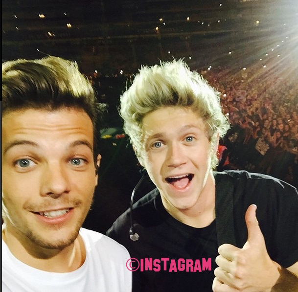 Niall Horan Sends His Condolences To Louis Tomlinson After The Death Of His Mum