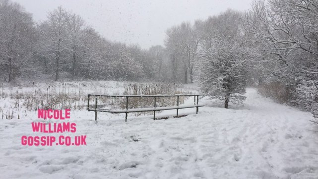 Britain Struggles With More Snow Making It The Coldest February In 27 Years!