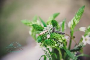 Austin Wedding Photographer, Texas Wedding Photographer, Central Texas Wedding Photographer, Waco Wedding Photographer, Llano Wedding, Outdoor Wedding, Waco Wedding Photographer