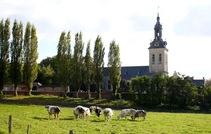 Weide mit Kirche im Hintergrund bei Leuven - Flandern Rundfahrt