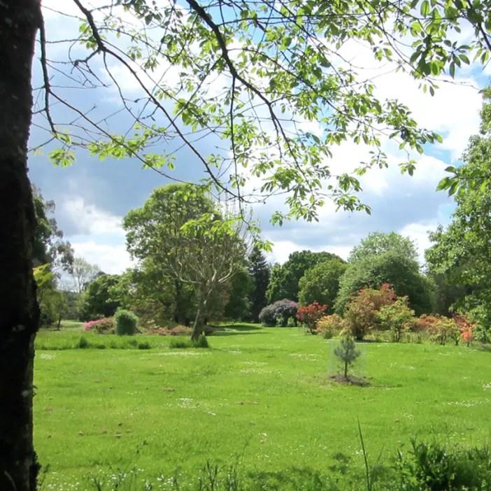 Rundreise-irland-reisetipps-irland-cork-blarney-castle-gardens