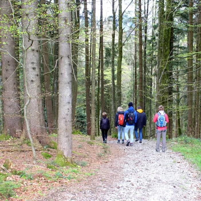 haubers-alpenresort-oberstaufen-allgaeu-bayern-hoteltipp-deutschland-klimapfad-wandern
