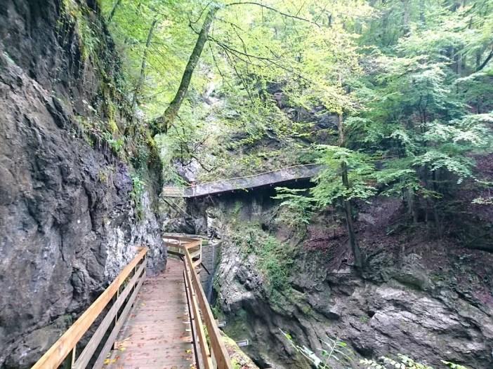 sehenswuerdigkeiten-dornbirn-reisetipps-vorarlberg-reisetipps-oesterreich-rappenlochschlucht-holzsteig