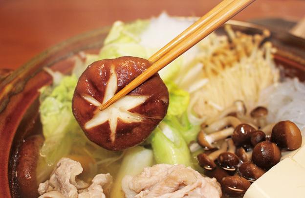 椎茸-鍋料理