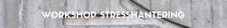 Hoe laat je langdurig stress-gerelateerde zieken soepel terug keren op de werkvloer. Wat is stress en burn-out en hoe communiceer je daar over met elkaar? Deze training of workshop stresshantering gaat daar op in.