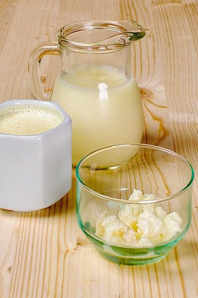 Comment fabriquer et cultiver un ferment «maison» pour faire ses yaourts