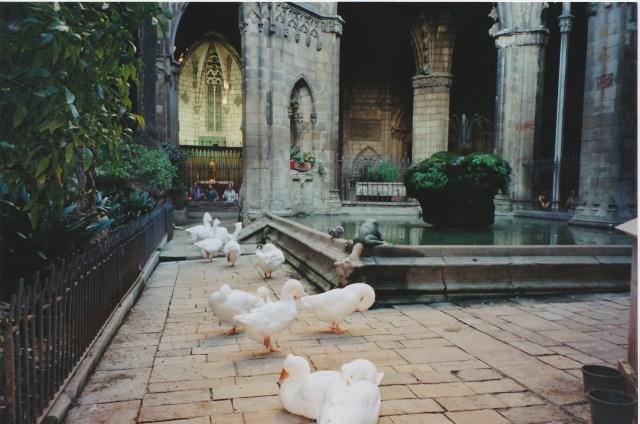 Kathedrale Brunnen
