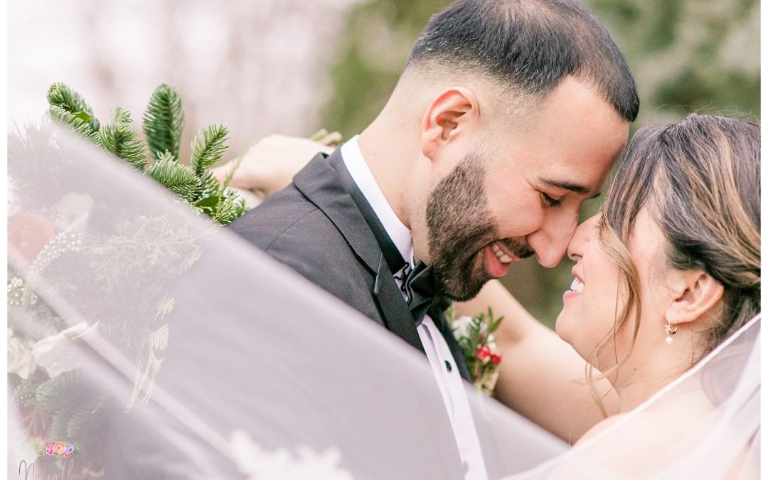 A classy Winter Wedding in New Hyde Park, NY