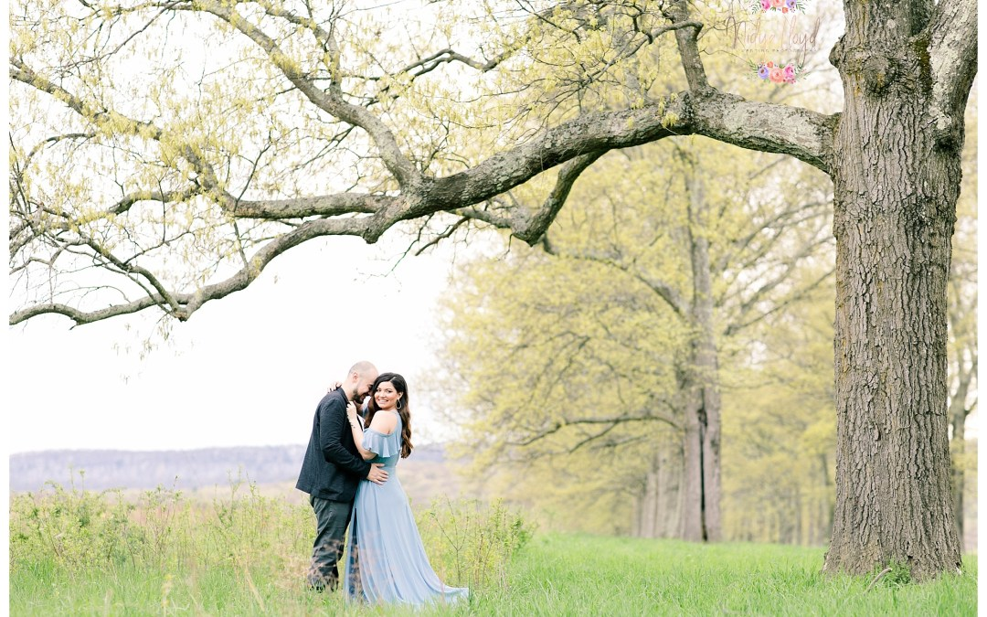 A Whimsical Mohonk Engagement Session