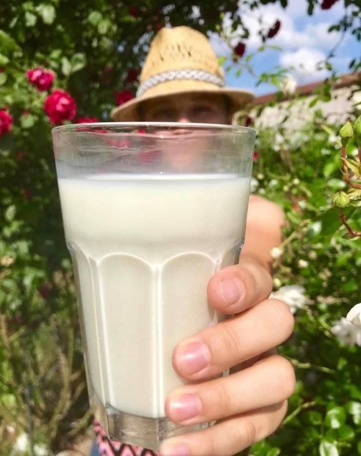 Milchprodukte kuhgebundene Kälberaufzucht Biomilch Biohof Kuh und Kalb