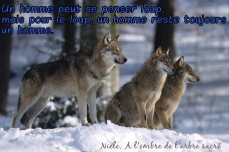 Loups et Hommes
