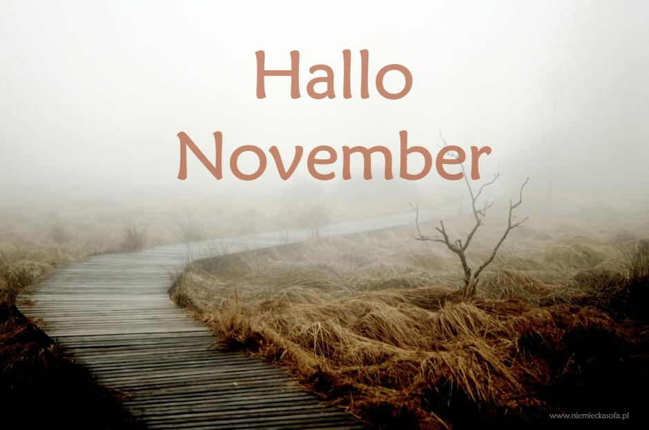 hallo_november