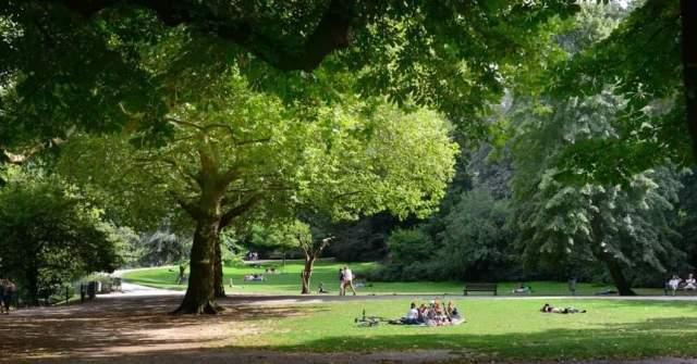 Forse investering in parken Nieuwerkerk