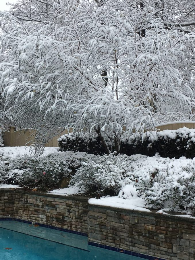 Southern Snow in December