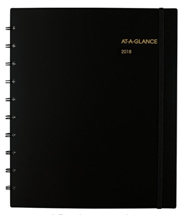 At A Glance Monthly Calendar