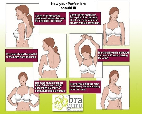 how a bra should fit