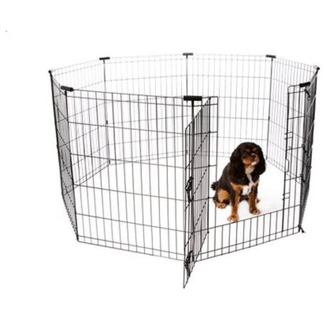 Play Pen For Puppy From Chewy