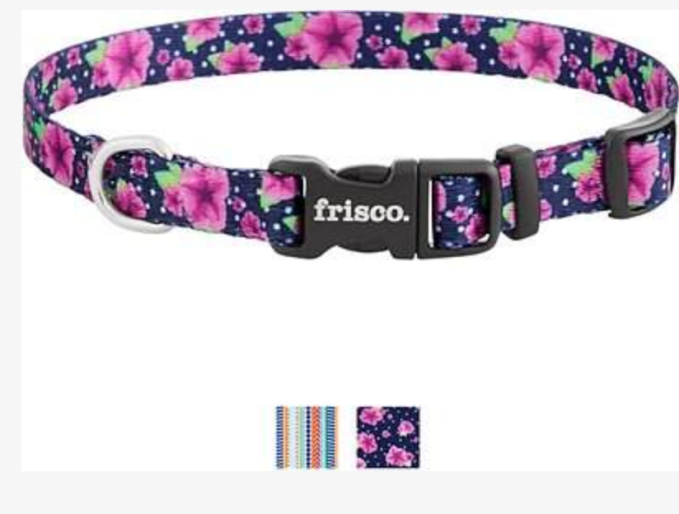 Nora LOVES her Patterned Dog Collar in Midnight Floral