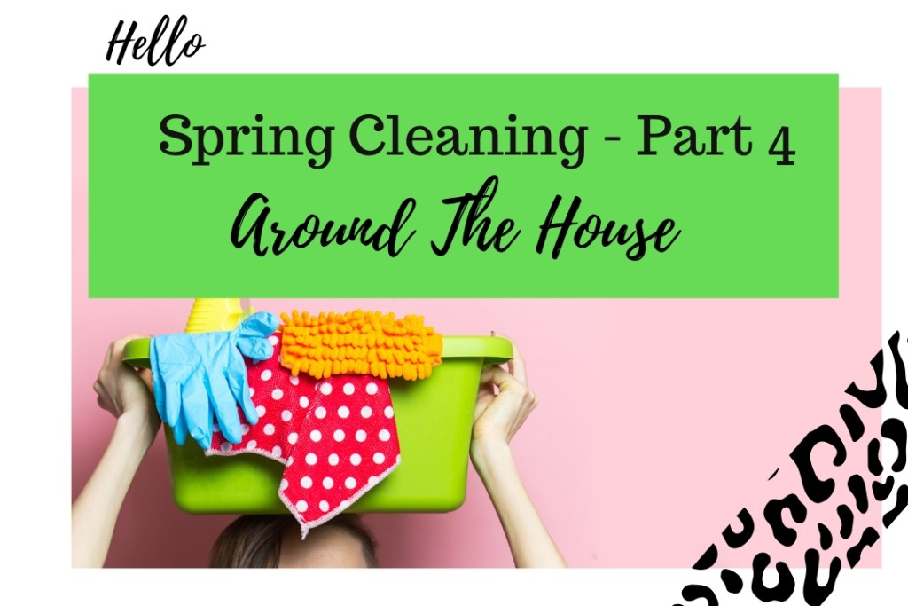 Spring Cleaning Part 4- Around The House