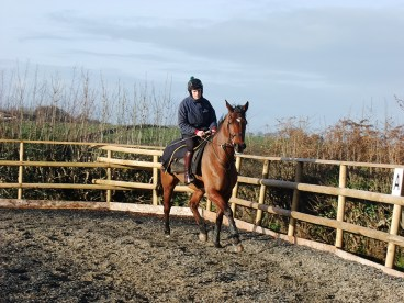 The Training Ring at Thorne Farm Racing