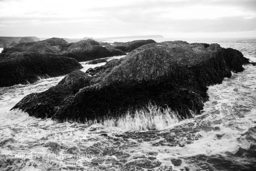 Nigel Ivy Photography - A windy day up at Ballintoy Harbour