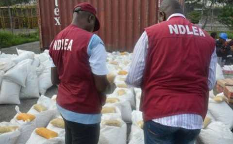 Campaign against drug abuse, a collective responsibility –  NDLEA