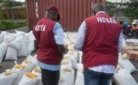 NDLEA raids drug spots in Lagos, intercepts container containing two million capsules of Tramadol in Apapa port