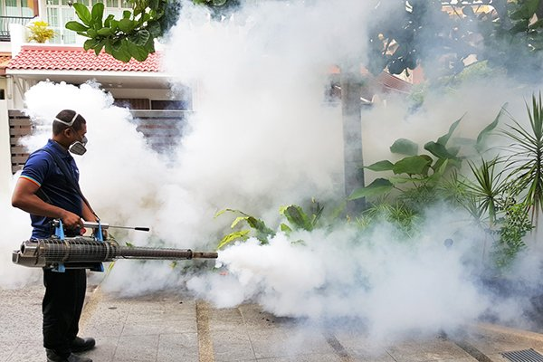 Fumigating outdoor spaces not recommended to kill  #COVID-19 virus – WHO