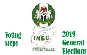 INEC Voting Procedures for the 2019 General Elections in Nigeria