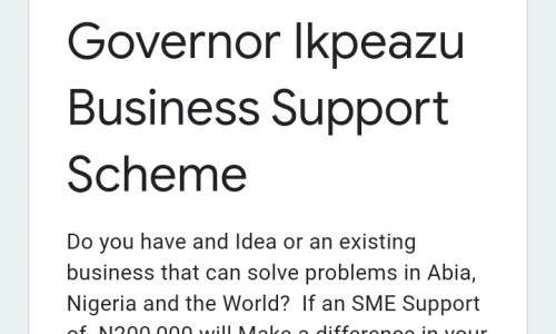 Governor Ikpeazu Business Support Scheme Online Application (2nd Phase)