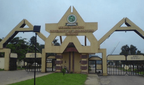 Michael Okpara University, Umudike
